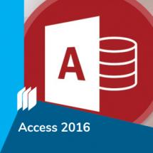 ic_access2016
