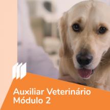 ic_auxiliarvetmod2
