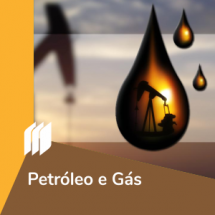 ic_petroleo