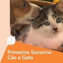 ic_primeirossocorrosCaoGato