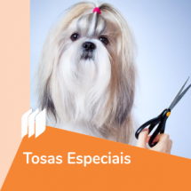 ic_tosasespeciais