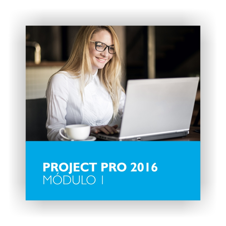 Project Pro 1